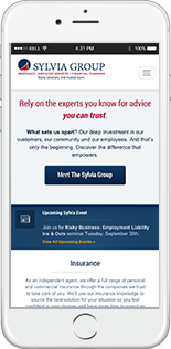 Sylvia Group Website Responsive Website